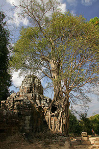 photographie Cambodge, temple d'Angkor